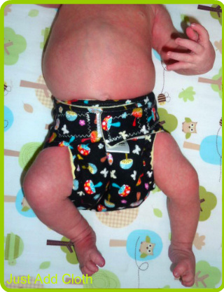 Review: Hippeez Fitted Cloth Diaper – Just Add Cloth