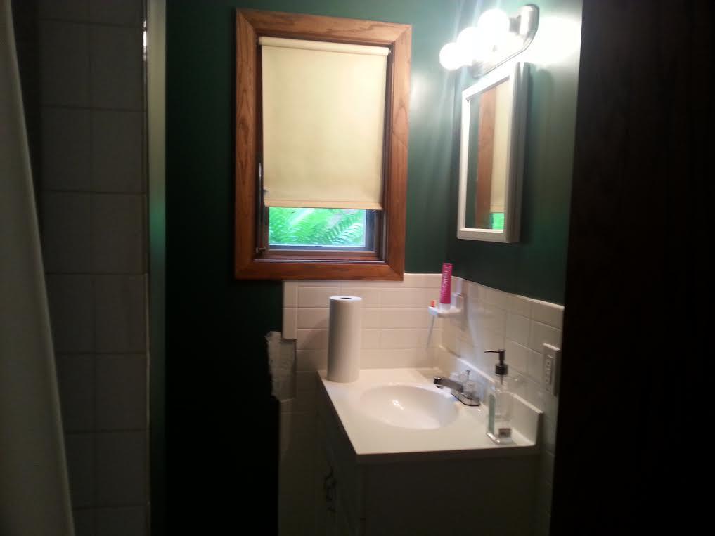 basment bathroom 1