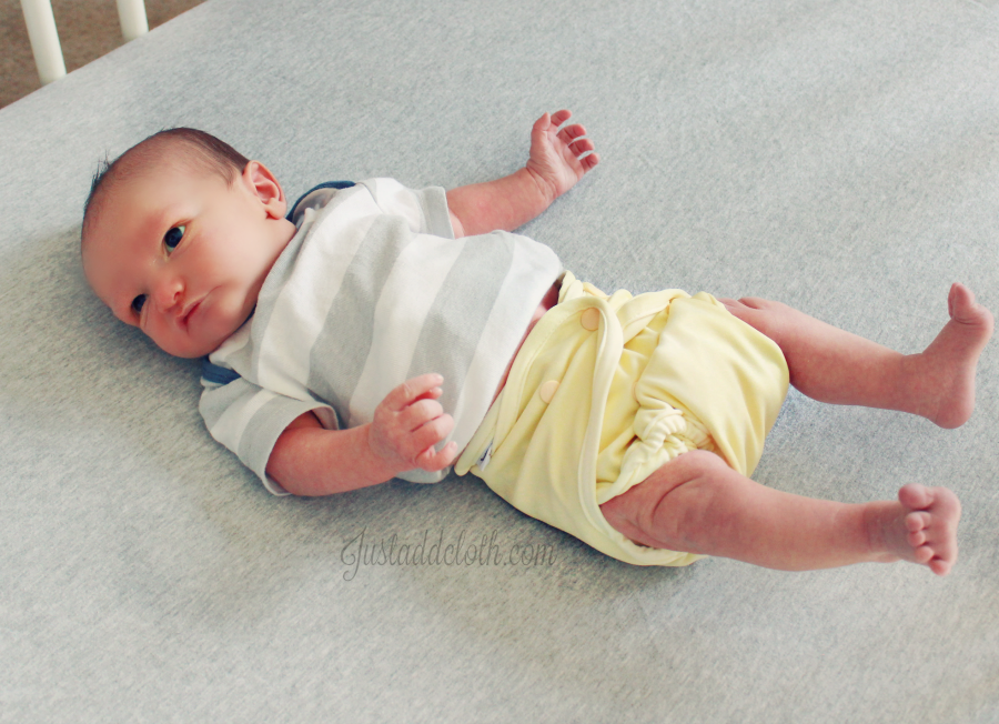 buttons cloth diapers newborn 3