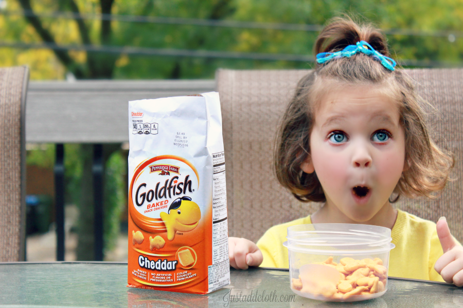 goldfish-moments-4