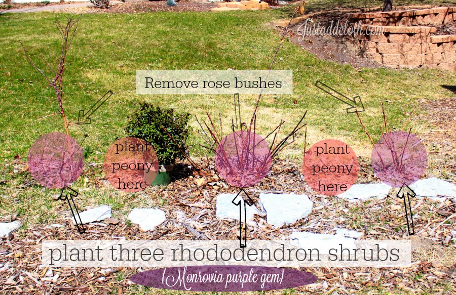 garden planning with color 5