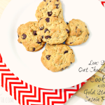Low Sugar Oat Chocolate Chip Cookies with Gold Standard Casein Protein